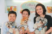 Coffee-Puppy_Cooking-For-Dogs-Workshop_1-2-25