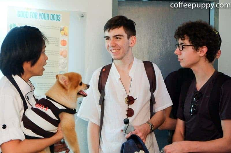 Coffee-Puppy-French-Students-Workshop-14