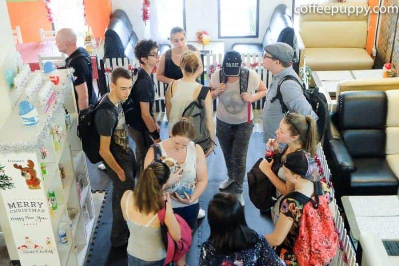 Coffee-Puppy-French-Students-Workshop-16