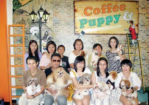 Sanook Coffee Puppy