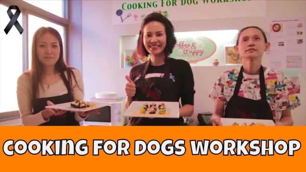 "Video ""Cooking For Dogs Workshop"" #1 Natural, Healthy, Human-Grade"