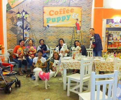 Coffee Puppy Customers