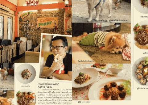 """Coffee & Puppy"" Featured in Praew Magazine (นิตยสารแพรว)"
