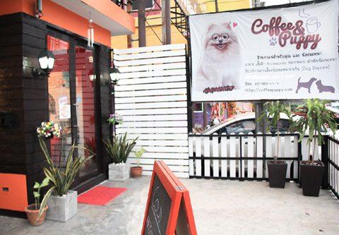 """จุดเริ่มต้นของ """"Coffee & Puppy"""" """"The Beginning 2012"""""""
