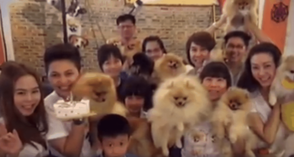 Puppies Birthday Party