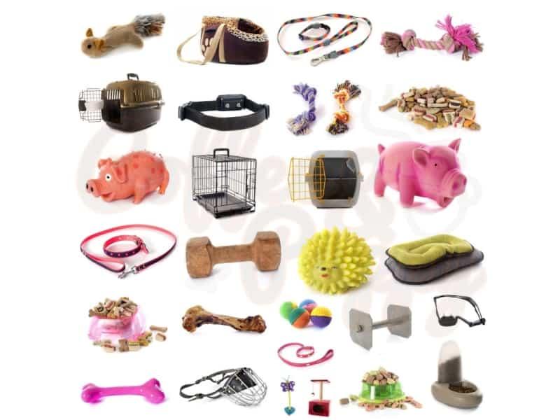 บอร์ด-อุปกรณ์-ของใช้-ของเล่น-เสื้อผ้า-น้องหมา