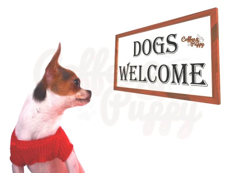 บอร์ด-โรงแรม-รีสอร์ท-ที่พัก-น้องหมาเข้าได้