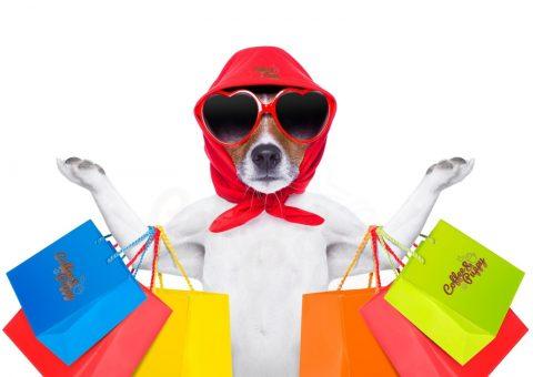 เปิดแล้ว-ช้อปปิ้งกับร้านค้าออนไลน์ของ-coffee-puppy
