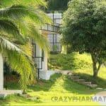 chiangkhanrivergreenhill-09