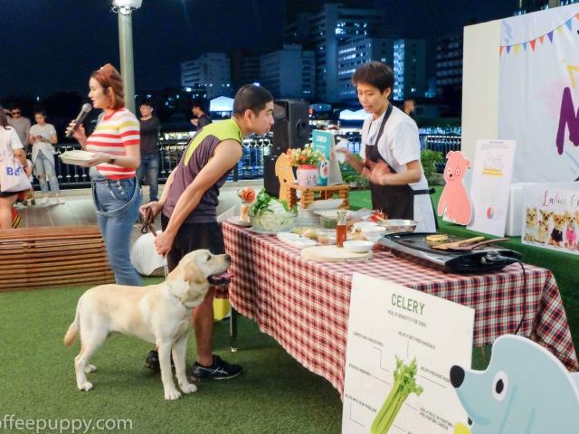 Coffee & Puppy @ Mha Ma Tha 2 (หมามาท่า 2) 41