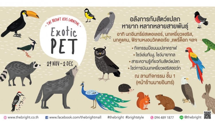 the-bright-kids-carnival-exotic-pet