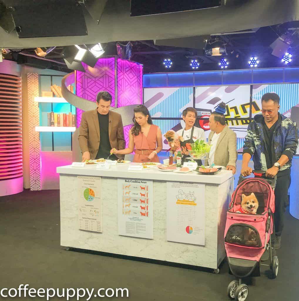 Coffee & Puppy On TV: รายการ ปากลำโพง Amarin TV HD 34 4
