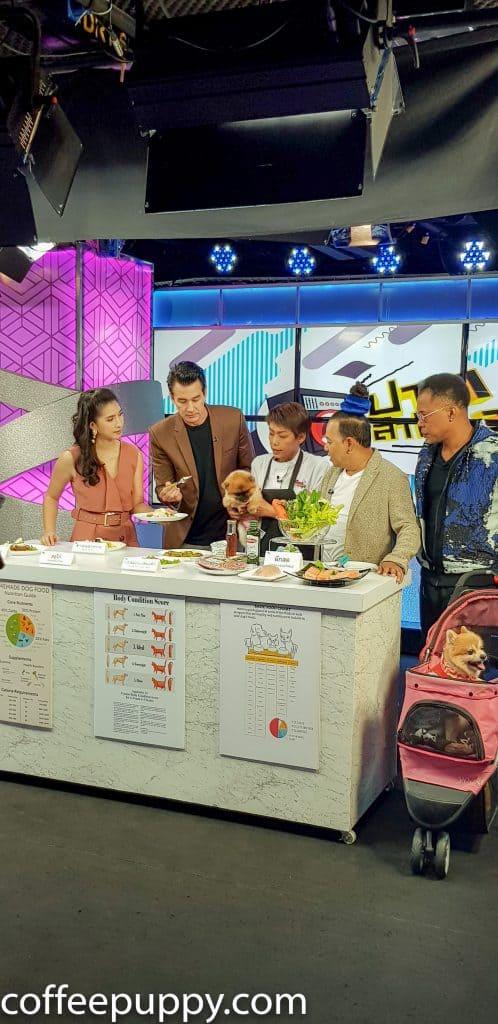 Coffee & Puppy On TV: รายการ ปากลำโพง Amarin TV HD 34 6
