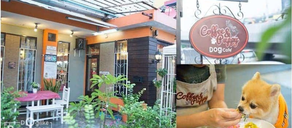 Dog Cafe In Bangkok : DogiLike Review