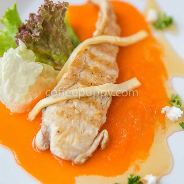 Grilled Chicken Carrot Sauce - Puppy Menu