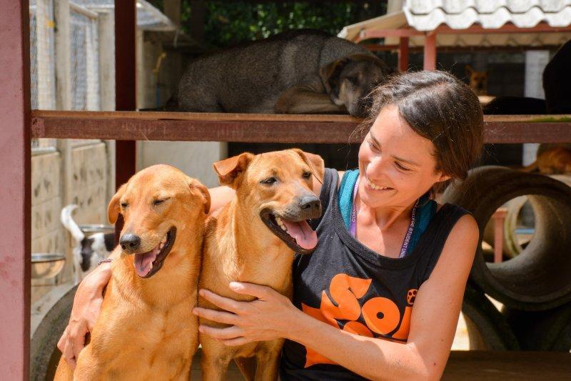 บอร์ด อีเวนท์ กิจกรรมน้องหมา งานน้องหมา งานสัตว์เลี้ยง 5