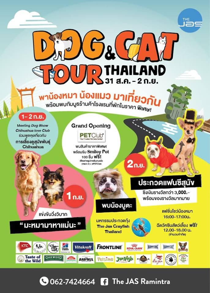 Dog & Cat Tour Thailand
