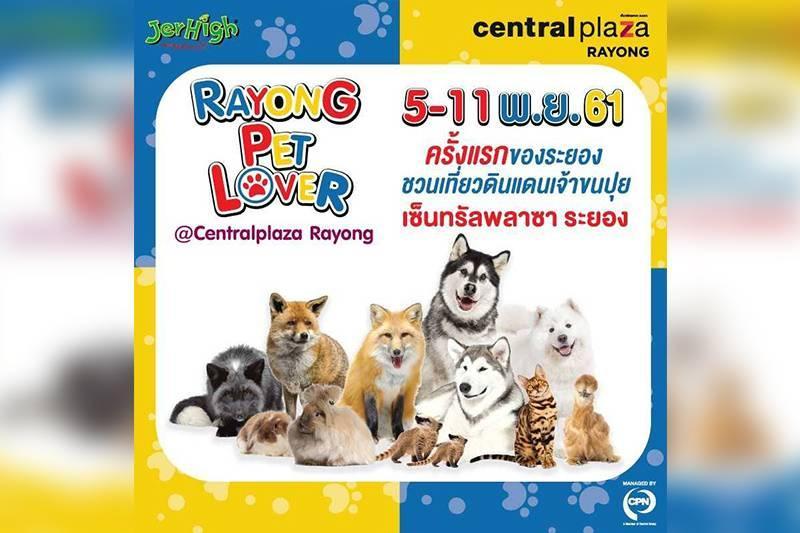 Rayong Pet Lover @ CentralPlaza Rayong