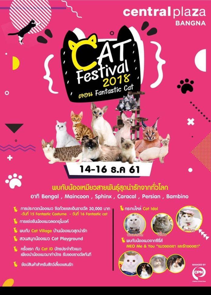 """งาน """"Cat Festival 2018"""" ศูนย์การค้าเซ็นทรัลพลาซา บางนา"""