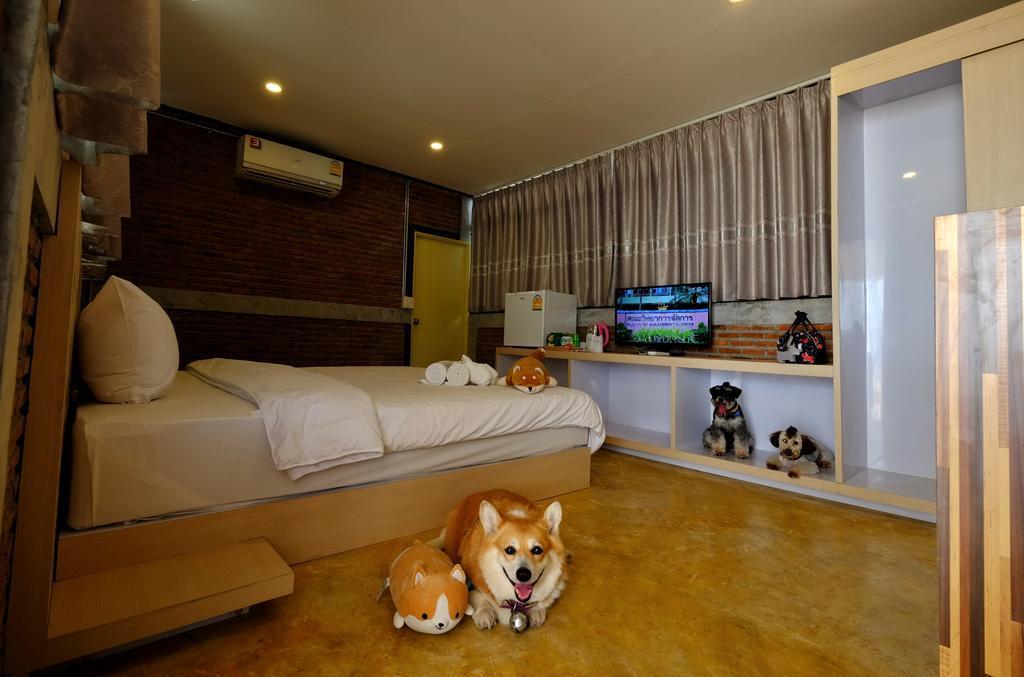 Loft_Buddy-นครราชสีมา-น้องหมาพักได้01
